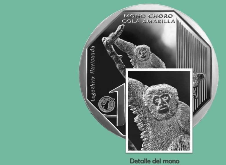 Detalles de la moneda alusiva al mono choro