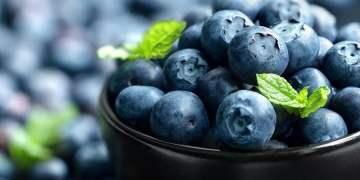 Uva, granada y arándano impulsaron exportaciones de frutas en 2019