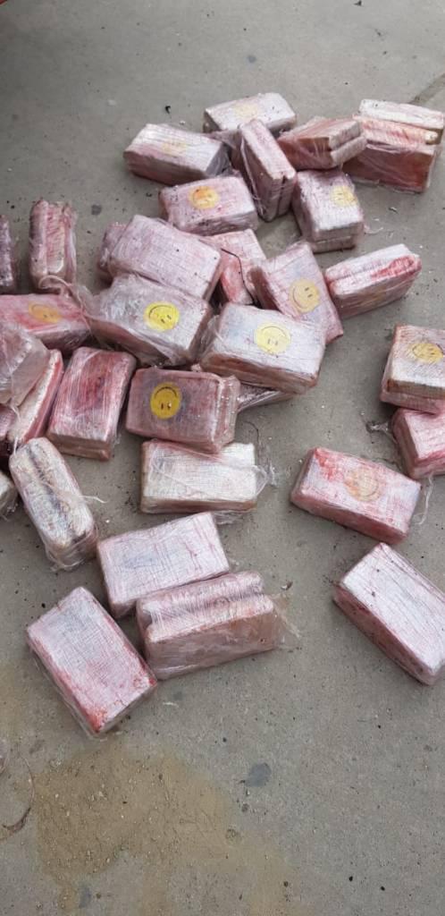 Tumbes: Incautan 370 kilos de marihuana en camión frigorífico
