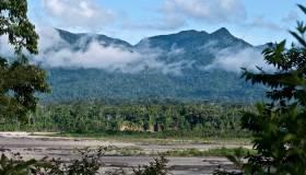 Reserva Comunal Amarakaeri ingresa a Lista Verde de áreas protegidas