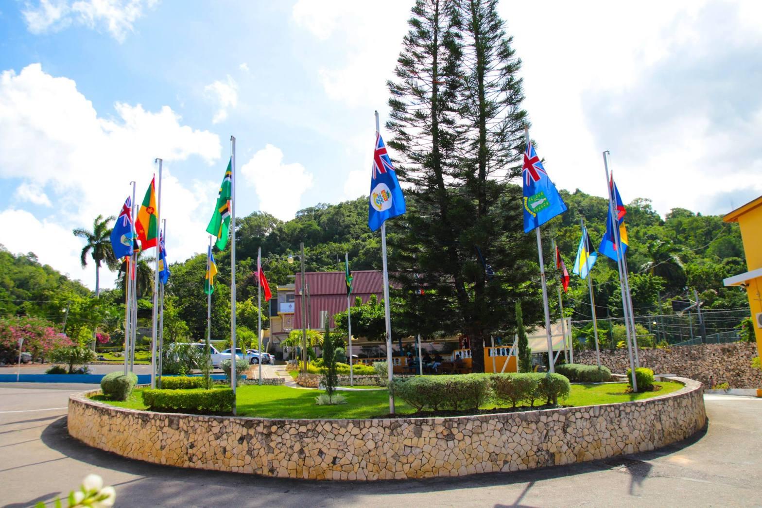 OEA ofrece becas de licenciatura y maestría a peruanos según Pronabec