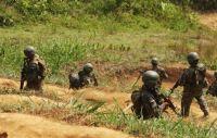 VRAEM: Fuerzas del Orden destruyen campamentos terroristas