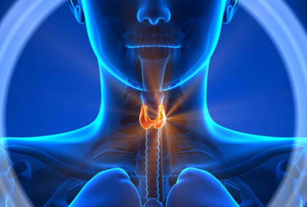 Si tienes un cuello grueso, puedes tener un tumor de 2 cm. y no notarlo
