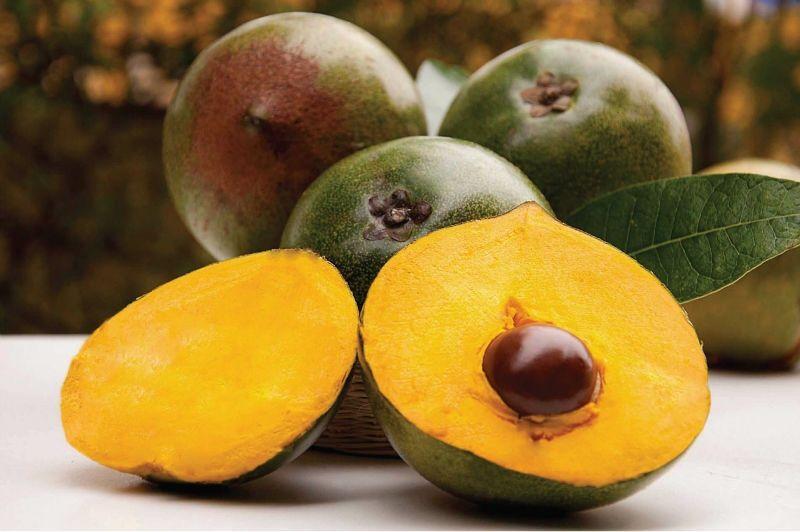 La lúcuma: ¿Por qué este súper alimento previene el cáncer y la anemia?