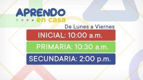 """""""Aprendo en casa"""": Canales de televisión privados transmitirán estrategia del Minedu"""