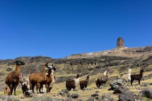 Paisaje Apu Tambraico de Huancavelica declarado Patrimonio Cultural de la Nación