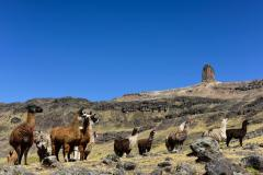 Paisaje Apu Tambraico de Huancavelica declarado Patrimonio Cultural de la NaciónPaisaje Apu Tambraico de Huancavelica declarado Patrimonio Cultural de la Nación