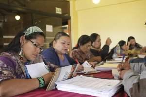 Ministerio de Cultura invita a XV Curso de Intérpretes y Traductores de Lenguas Indígenas para servicios públicos