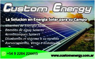 Custom Energy mobile