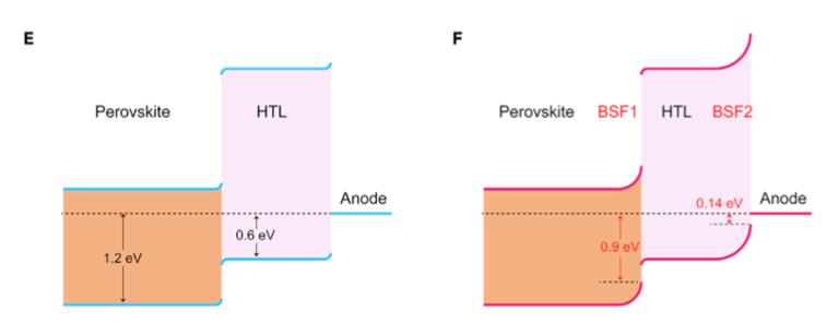 开尔文探针力显微镜(KPFM) 同时提供了对源自尖端和样品表面之间的接触电位差