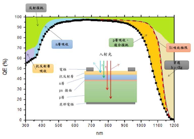 矽晶太陽能電池元件結構 量子效率