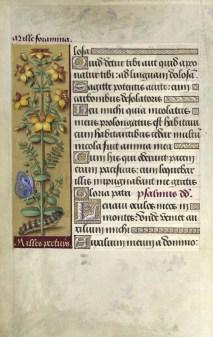 Grandes Heures d'Anne de Bretagne : Folio 127