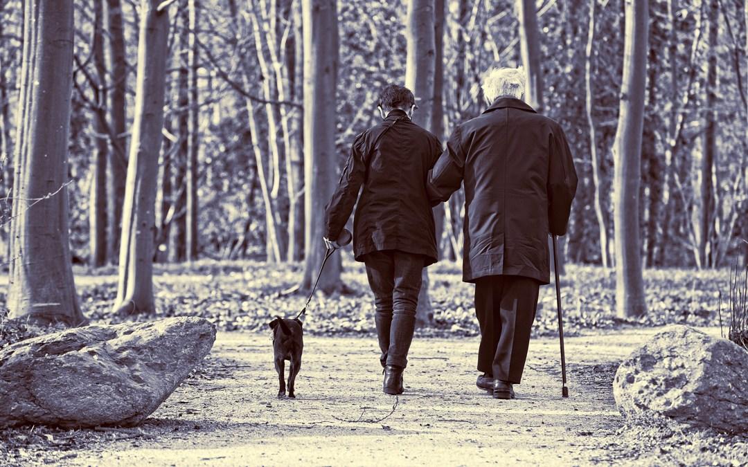 Autonomía y dependencia de las personas mayores en Navarra