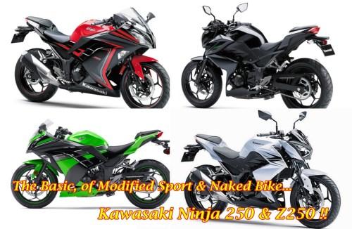 Ninja 250 & Z250