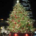 「やっぱりね」感溢れる「愛媛のクリスマスツリー」wwwww