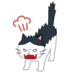 猫カフェで猫の匂いたっぷりつけて帰宅したら自宅の猫がブチギレたww