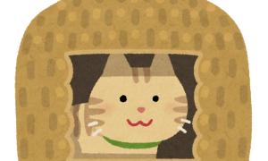 ニャーン。(600円)