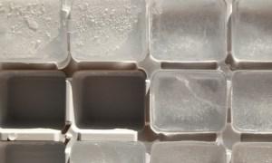 一年間開かなかった冷凍庫をこじ開けたら大変なことになっていた…