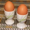生卵を器で転がすと「ヤバいヤバい」と聞こえるライフハック。