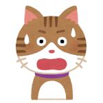 「思ってたんと違う!」カリカリの音だと思って近寄ったら柿の種だったときの猫の表情w