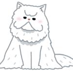 フレディ・マーキュリーさんが飼っていた猫の表情ww