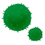 6年間水をあげて育ててきた「藻」をよく見たら…衝撃的事実が判明したww