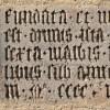"""「なんたる偶然w」ラテン語で""""馬鹿者""""を意味する言葉がコチラwww"""