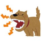 ガラス越しに威嚇し合う犬が直接対面した結果www 「まさにネット弁慶…」