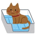 有名ペット用品メーカーの「猫用トイレ」は梱包もひと味違う。猫の習性に特化したデザインが素敵😸