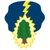 「落雷に遭った木がスゴイ燃え方をしている」…非常に珍しい映像がTwitterで話題に