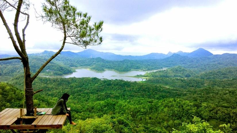 tempat wisata di jogja terbaru yang dikenal akan keindahan hutan pinus dari atas
