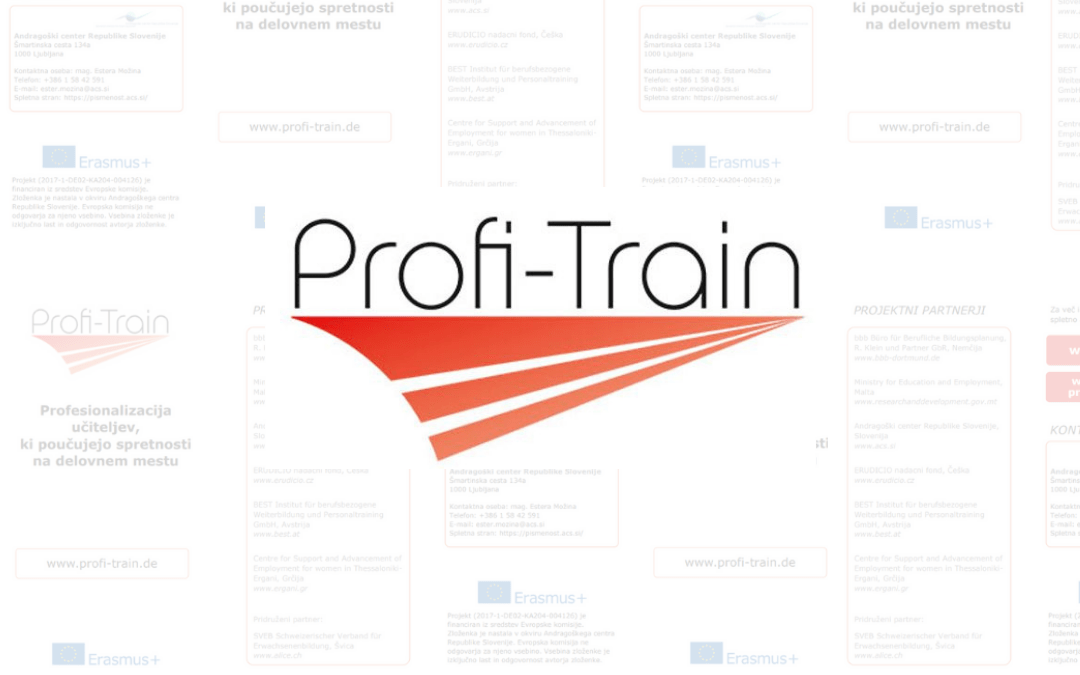 The Profi-Train international project in full swing