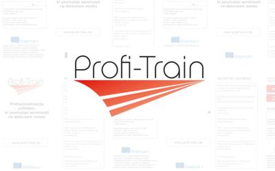 The Profi-Train international project in full swing