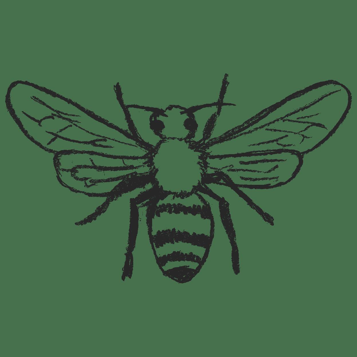 蜂のイラストフリー素材