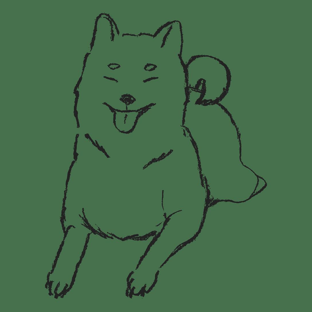 伏せをする柴犬のイラストフリー素材