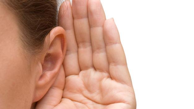 orejas-cartilagos-cartigalos artificiales-orejas