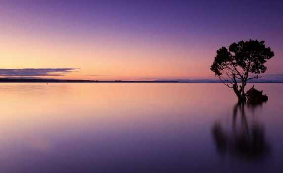 uso del horizonte a la hora de hacer fotos