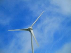 夏空と風車