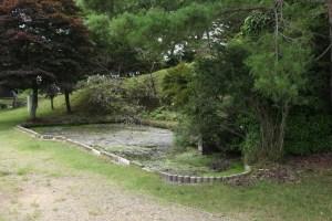 池田山の沼