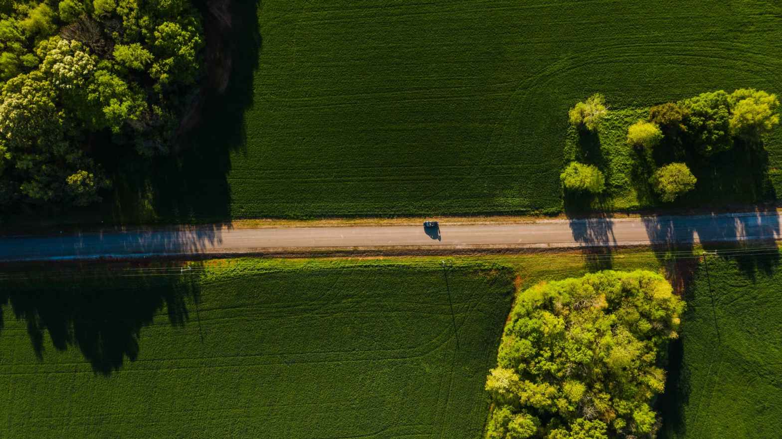 car driving through green fields on sunny day