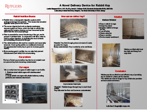A Novel Delivery Device for Rabbit Hay