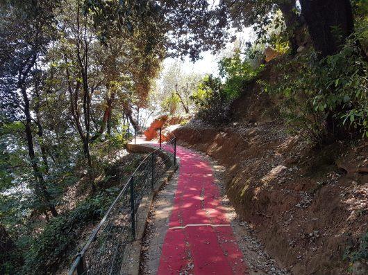 Il red Carpet