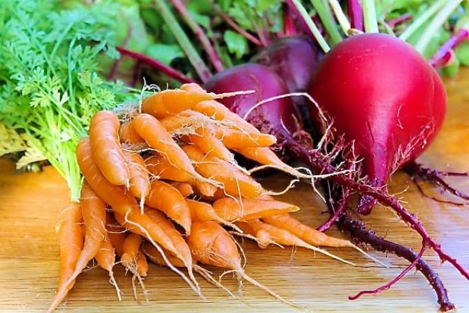 zanahorias y remolacha, producto de mi huerta