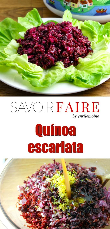 Scarlett Quinoa - SAVOIR FAIRE by enrilemoine
