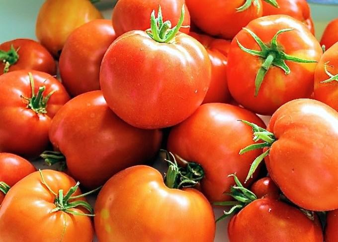 Tomatoes - Eggplant Lasagna - SAVOIR FAIRE by enrilemoine