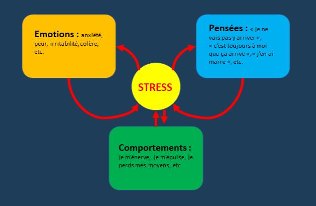 Les schémas du stress