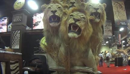 Image result for safari club international 2019
