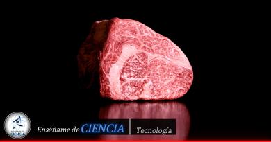 Científicos japoneses crean la primera carne Wagyu del mundo impresa en 3D