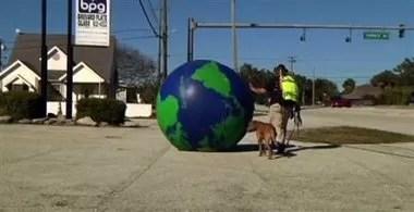 Hombre recorre EEUU a pie, con globo terráqueo y perro