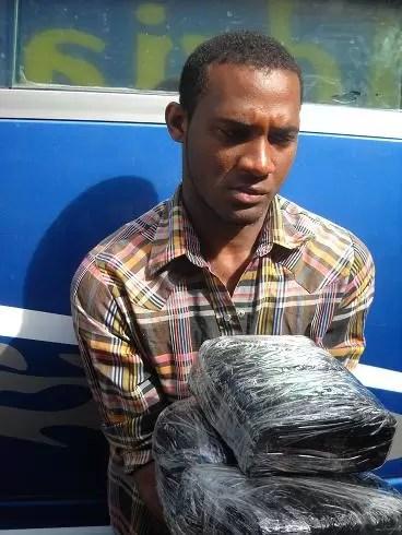 Detienen cobrador de una guagua ¨Voladora¨ con 15 libras de marihuana